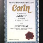 certyfikat3_2